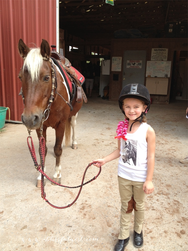 Laurens Horse Party Horse Party Activities