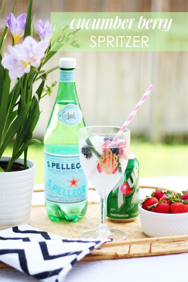 berry spritzer recipe by a blissful nest