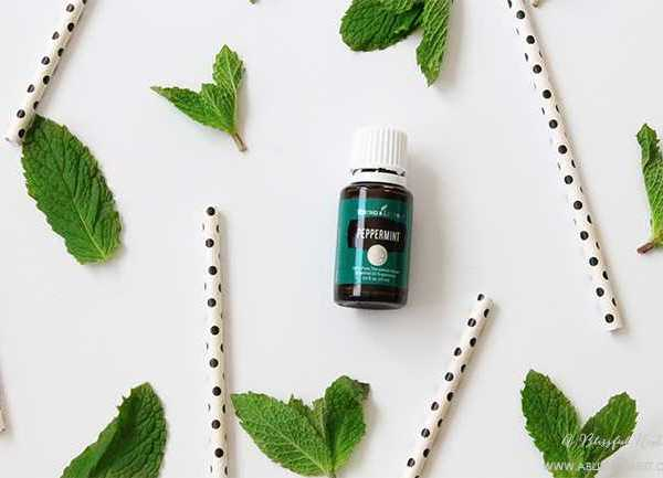 10 Common Uses Of Peppermint Essential Oil
