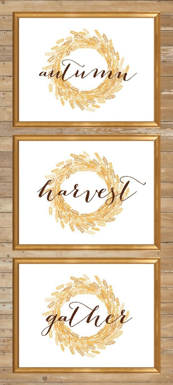 Trio of Fall Signs by Yellow Bliss Road for Tatertots and Jello, 30 Free Fall Printables