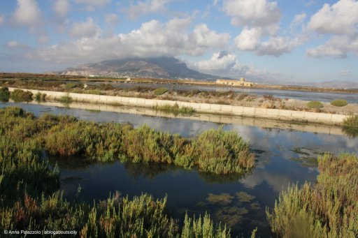 Trapani salt pans with Erice view