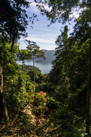 Took a photo through the jungle out into the lake when trekking to a cave.