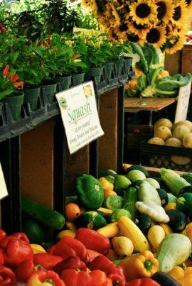 union-sq-market-046 Union Sq Farmers Market - NYC New York  New York Markets Food