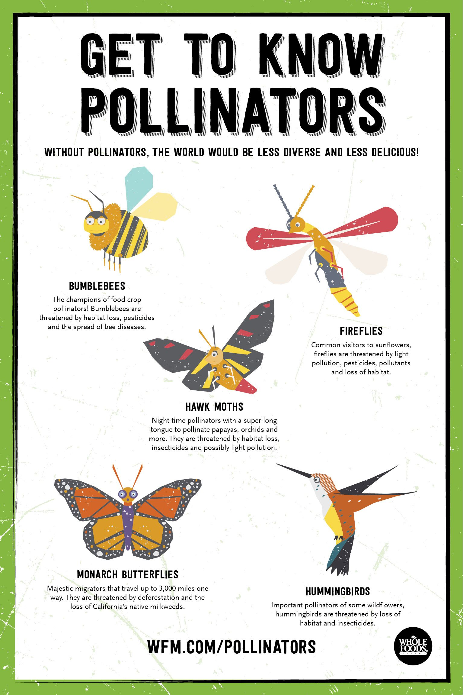 National Pollinator Week Is June 17 23