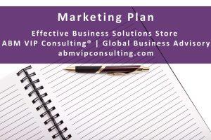 Professional Marketing Plan