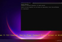 Windows 11 CLS Command