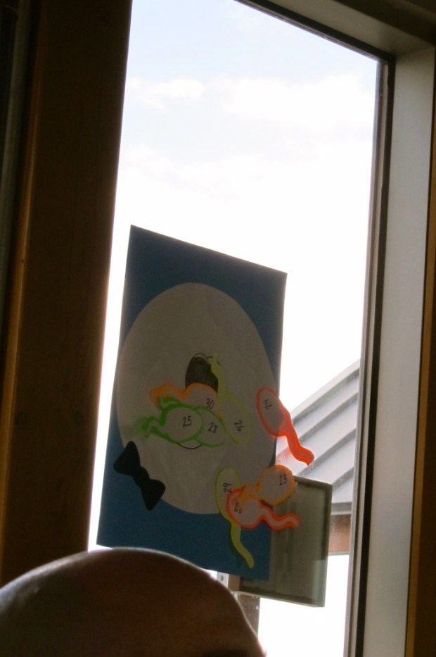 Pin the Sperm on the Egg