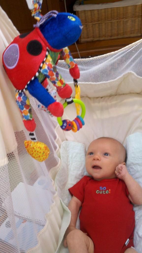 Sullivan enjoys his new baby hammock and likes looking at his ladybug