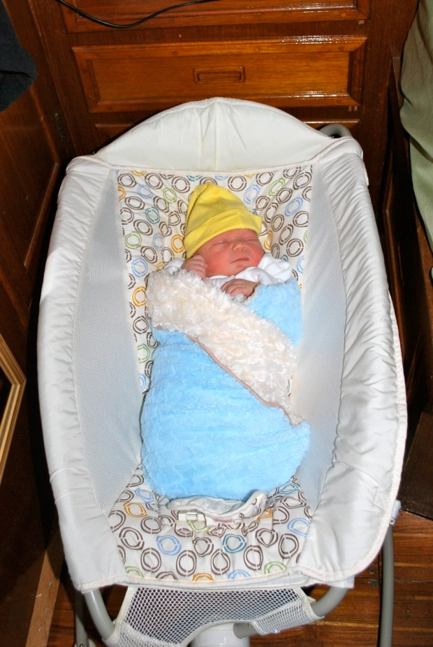 Brand new squish all bundled up in his bed