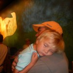 Slept through the Winnie the Pooh ride
