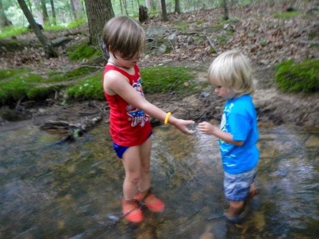 Sully and Olivia playing in the creek. Olivia loves the creek and got Sully to get his feet wet.
