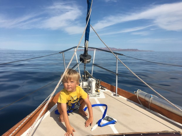 The sea was calm with no wind or waves and Sully wanted out of the cockpit so we put on the tether and harness for some play time on the foredeck
