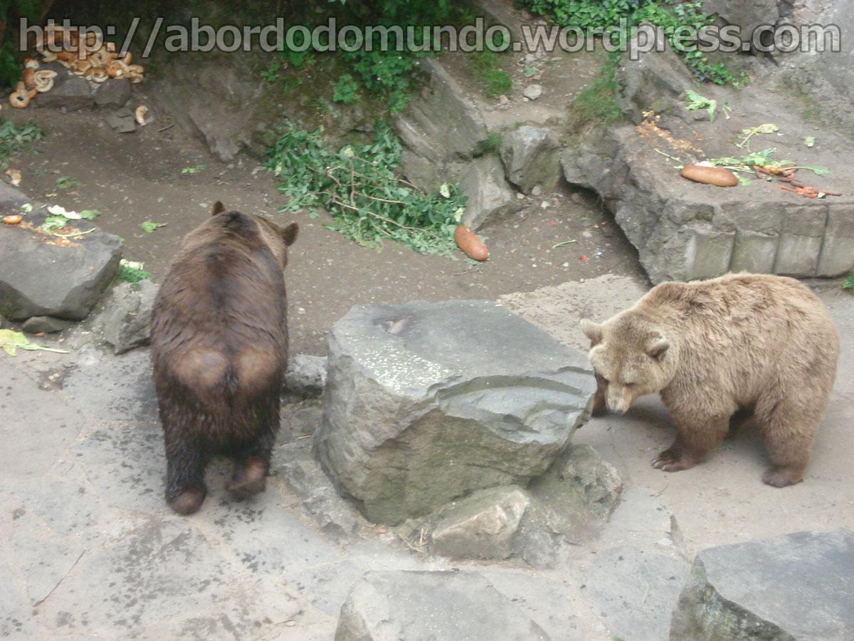 No fosso do palacio de Cesky Krumlov, tem uma família de ursos