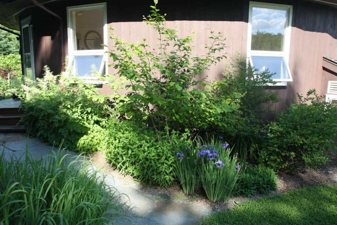 Thistle Hill - Brattleboro VT  - Landscape Design - front