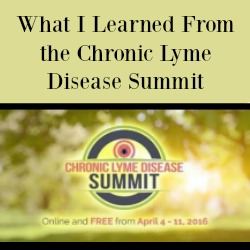 What I Learned From the Chronic Lyme Disease Summit