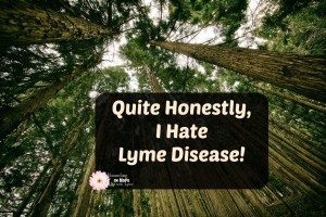 Quite Honestly, I Hate Lyme Disease