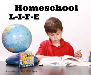It's Almost The End of Another Homeschool Year