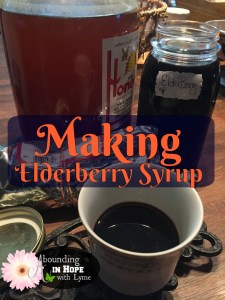 Making Elderberry Syrup for Immune Health