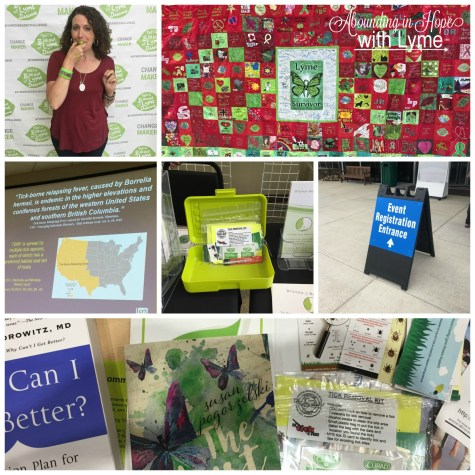 Southern Tier Lyme Support Conference 2017