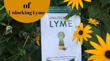 My Review of Unlocking Lyme