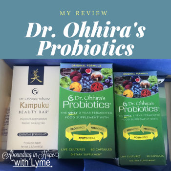 Post Lyme Gut and Dr. Ohhira's Probiotics®