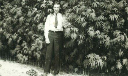 The Deep Roots of Marijuana in Our History