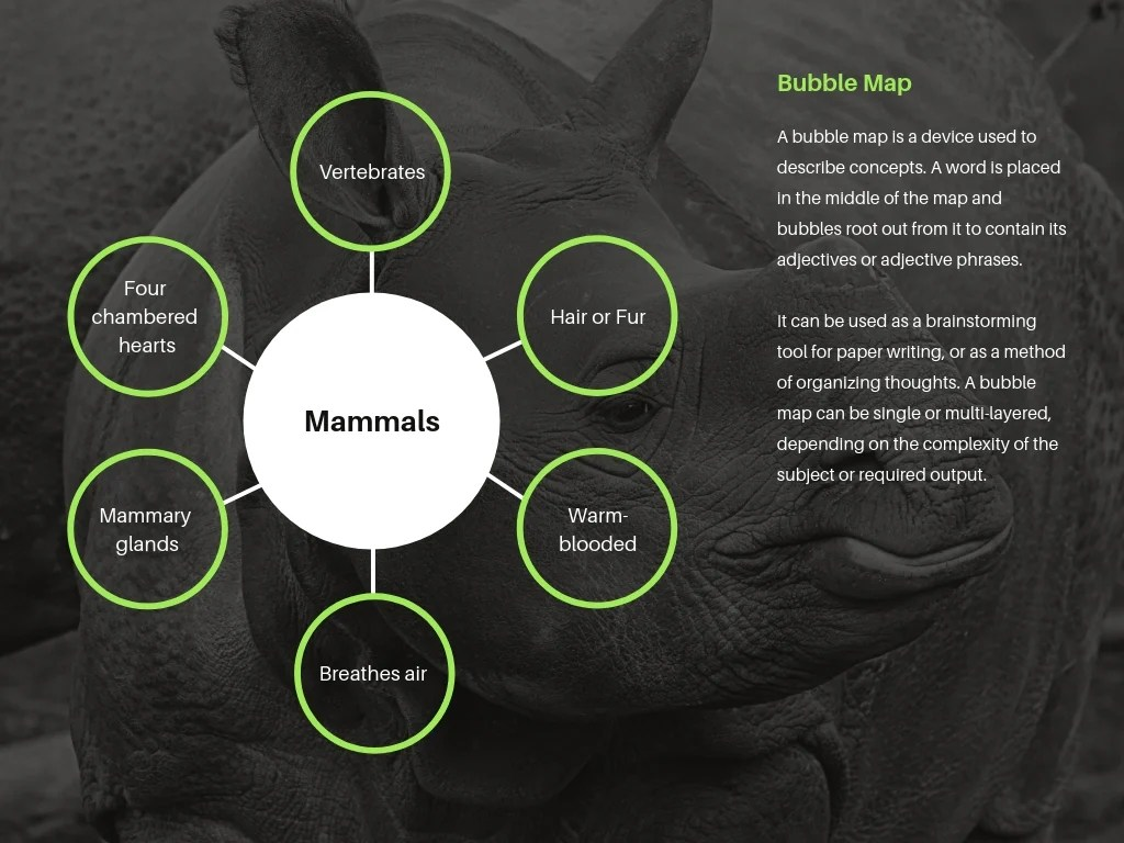 Free Online Bubble Map Maker Design A Custom Bubble Map