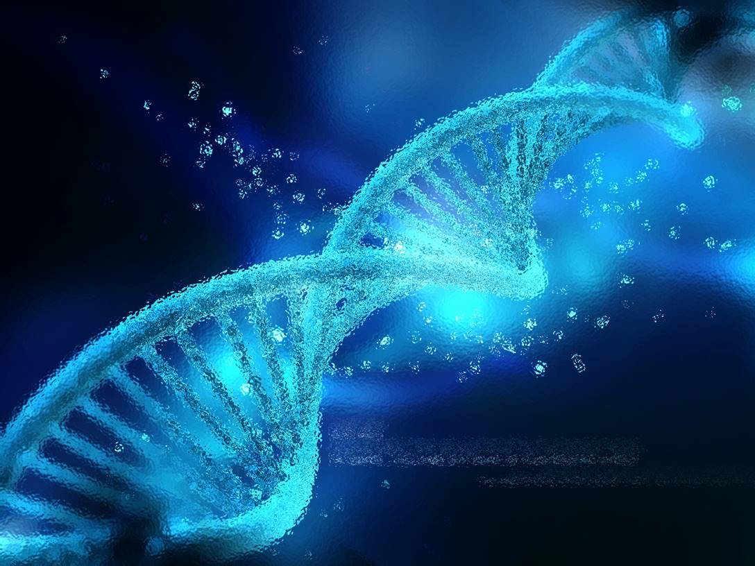 Nutrition epigenetics and health about ebooks nutrition epigenetics and health fandeluxe Choice Image