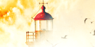 Cover art from Shelter in Place by Nora Roberts