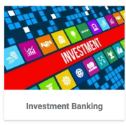 Investment Banking Category