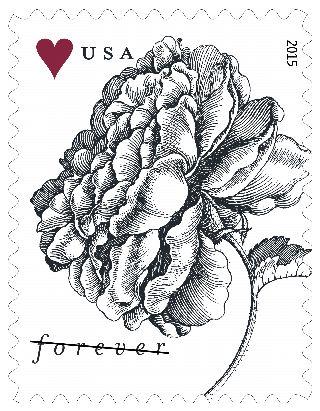 Stamp Announcement 15-8: Vintage Rose Stamp