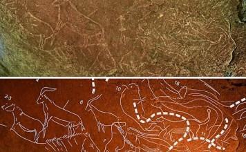 Grabados de 14.000 años de antigüedad descubiertos en la cueva de Armintxe (Lekeitio -Basque Country)
