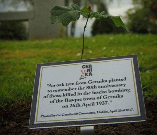 Retoño del Árbol de Gernika plantado en histórico cementerio Glasnevin de Dublín