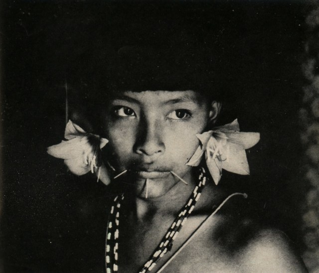 A Sanemá-Yanoama woman with her adornments Daniel de Barandiaran Life and death among the Sanemá-Yanoama Indians Anthrolopolgica, number 21, December 1967