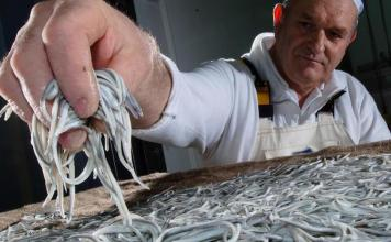 Un desconcertante artículo sobre las angulas en la BBC