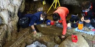 Miembros del grupo de investigación en plena excavación. Foto- UPV:EHU