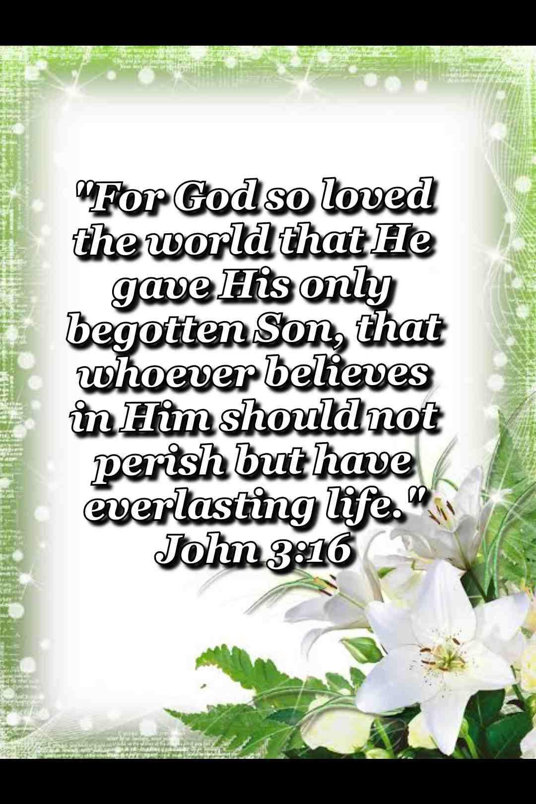 bible verse wallpaper (John 3:16)