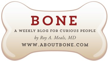 ABOUT BONE business card front
