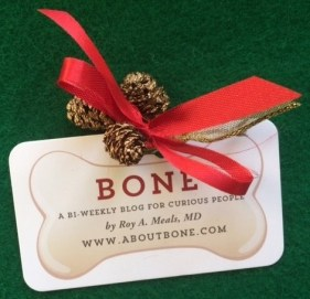 bone-christmas-ribbon-4105603875-1543595473781.jpg