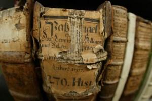 Alte Bücher erzählen von Beständigkeit © Stadt Wolfenbüttel