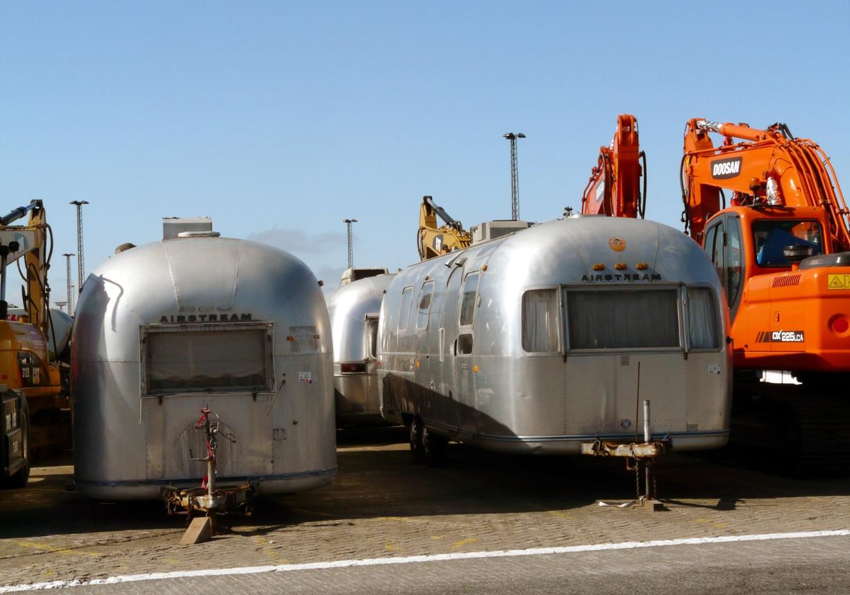 """Typische """"Silberlinge"""" sind ein gewohnter Anblick im Hafen. Foto: Dörte Behrmann"""