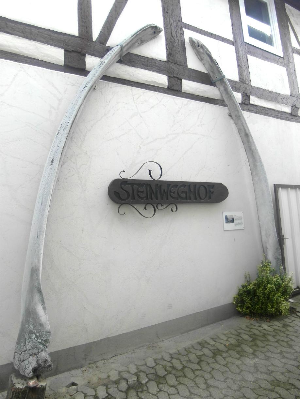 Zwei Walkiefer an einem Fachwerkgebäude in Gifhorn