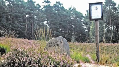 Löns-Stein in der Gifhorner Heide