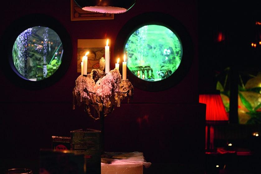 Zwei kleine Aquarien an der Theke der Nauti-Bar