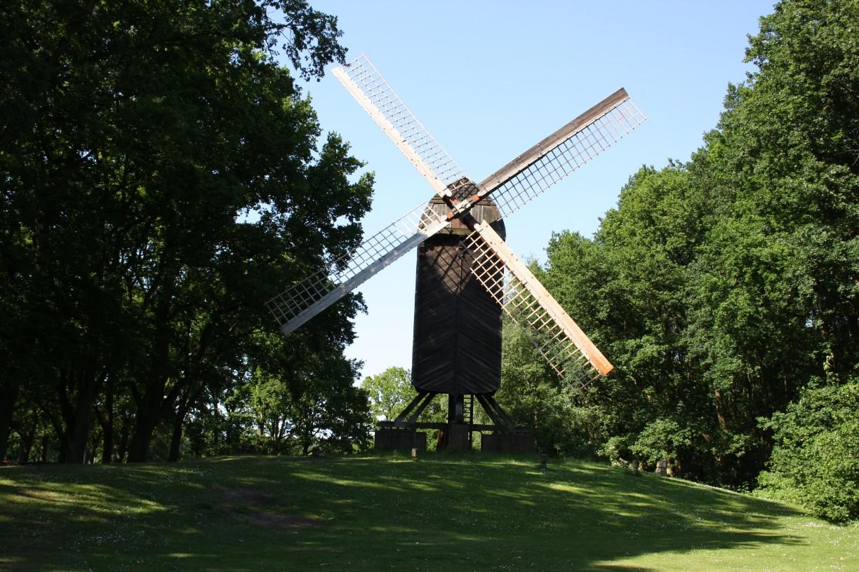 Inmitten riesiger grün belaubter Bäume steht die Bockwindmühle Bremerhaven