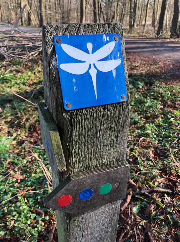 Die Markierungen in Form der Libelle weißt den Weg
