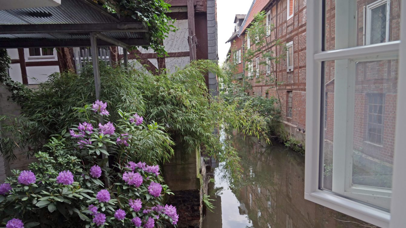 Klein Venedig: Schmale Gracht mit Fachwerkhäusern links und rechts, Blumen im Vordergrund