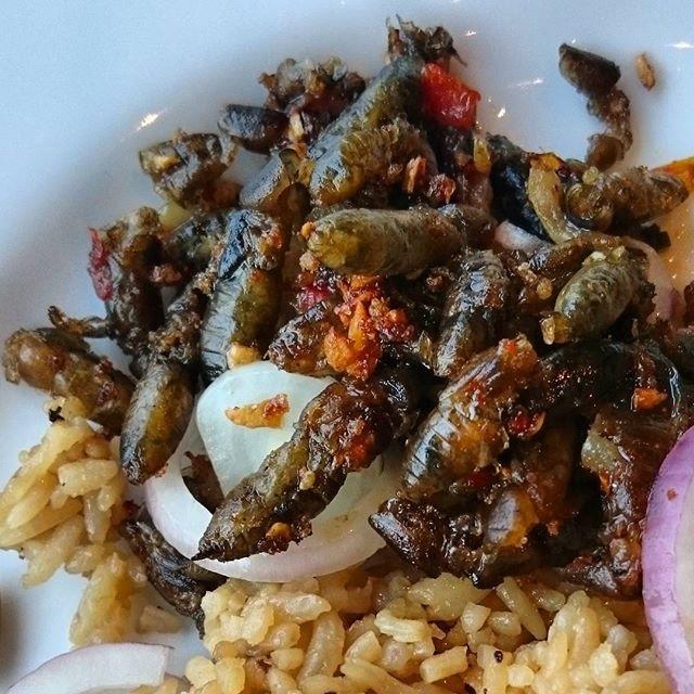 Balang (Locusts)