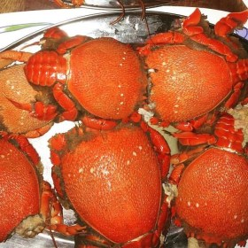 Curacha crabs