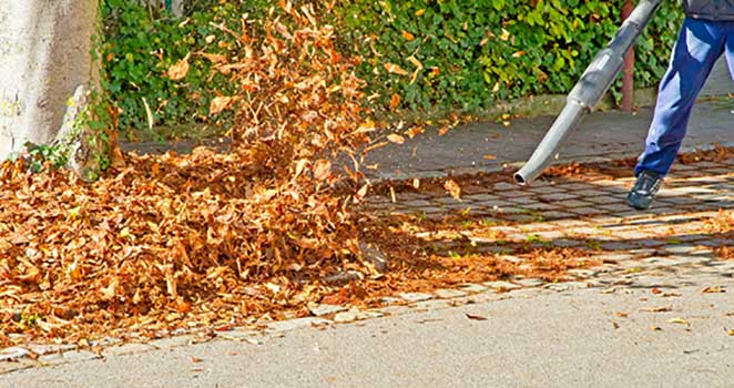 The Best Leaf Blower